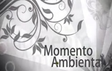 Momento ambiental 62
